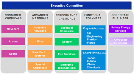 Solvay's New Organization Structure